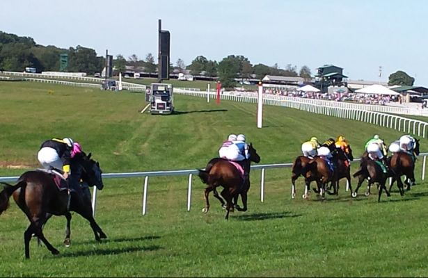 Kentucky Downs Turn 615 X 400