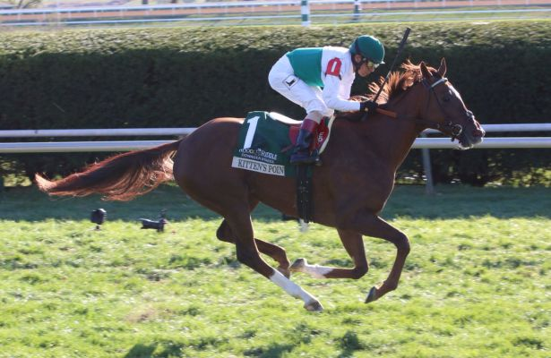 Kitten's Point wins 2015 Dowager