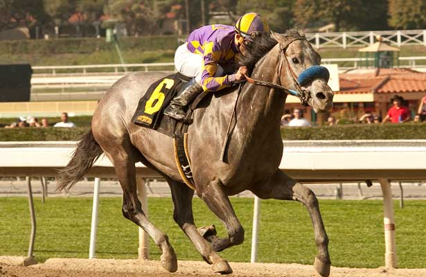 Kobe's Back wins 2014 San Vicente.