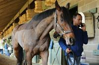 Kyriaki arrives at Oaklawn Park for 2016 Azeri Stakes