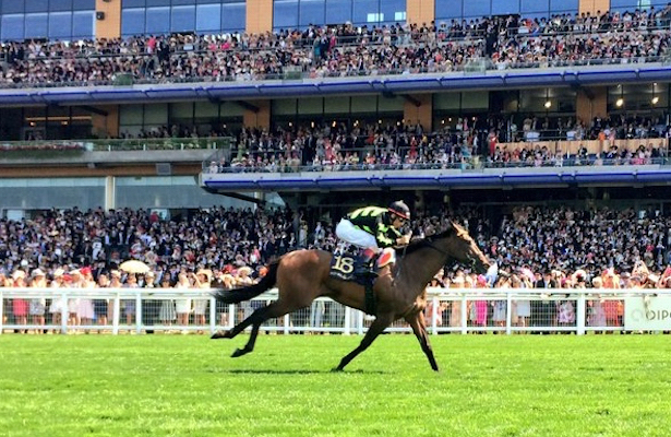 Lady Aurelia: Queen of Ascot
