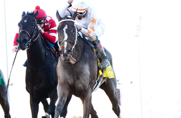 Lady Apple to follow Midnight Bisou's Eclipse-winning path