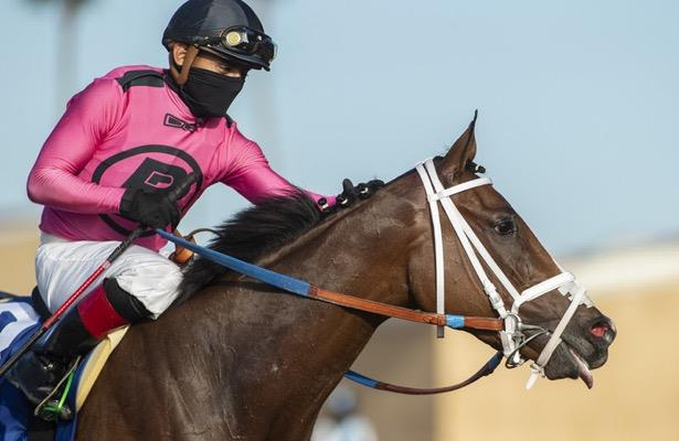 Laura's Light headlines Del Mar Oaks field of 11