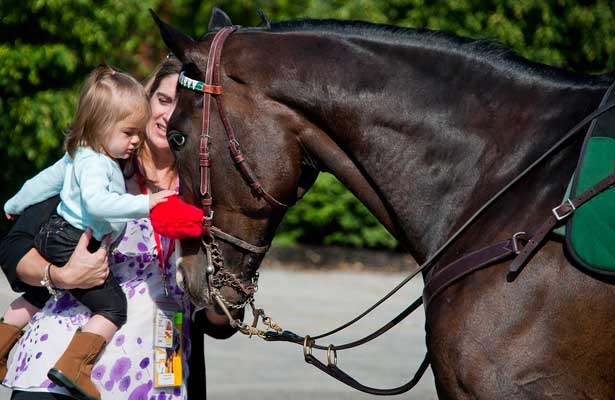 Tessa Tullock, 19 months, gets to pet retired thoroughbred race horse Lava Man as her mother Jillian holds her on May 12, 2012 in preparation for the 137th running of the Preakness Stakes at Pimlico Race Course in Baltimore, Maryland
