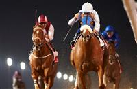 Long River lands the official Dubai World Cup prep race, the Group 1 Al Maktoum Challenge R3 for trainer Salem Bin Ghadayer and jockey, Mickael Barzalona. Credit: Dubai Racing Club//Andrew Watkins
