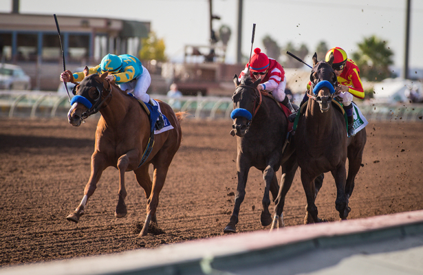 Weekend Rewind: What to Make of the Futurity and Starlet?