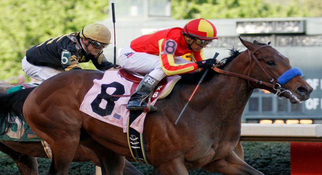 Secret Circle beats Optimizer in 2012 Rebel Stakes.