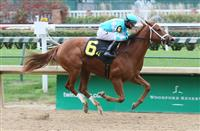 Monomoy Girl wins 2017 Rags to Riches