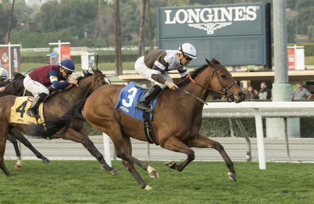 Madame Stripes_Megahertz 2018_615x400