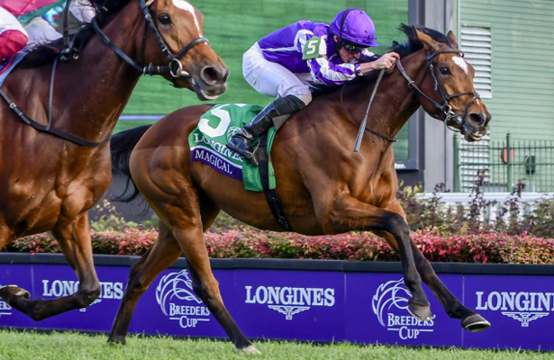 Report: Pegasus World Cup Turf may have its headliner