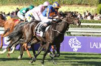 Magician wins the Breeders' Cup Turf!