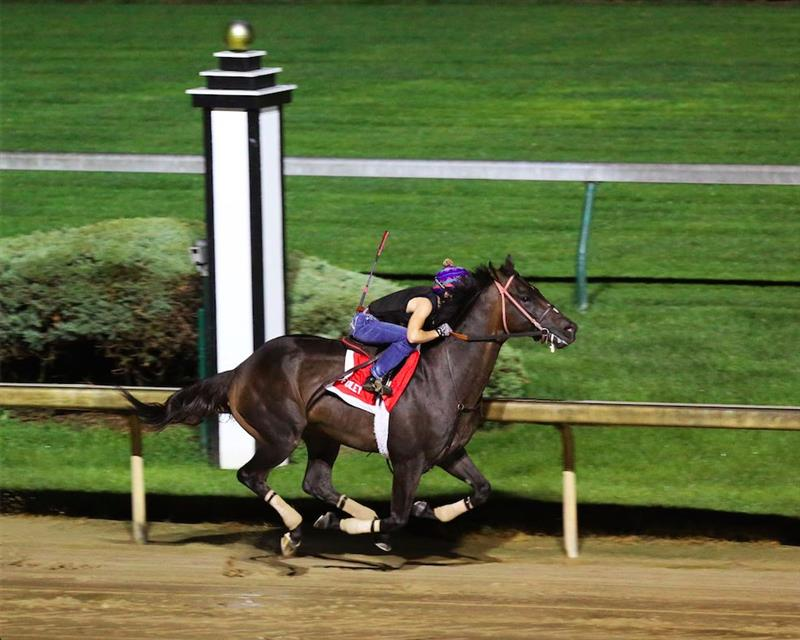 Several Derby probables work at Churchill on Saturday