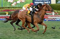 Manchurian High wins 2016 Sunshine Millions Turf