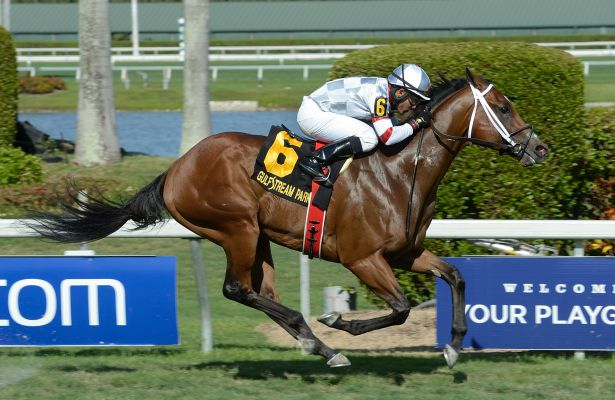 Manhattan Dan wins 2016 Fisher Island Handicap.