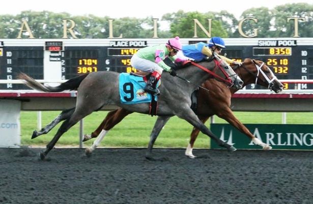 Catalano Eyes Breeders Cup With Ellis Park Juvenile Runner