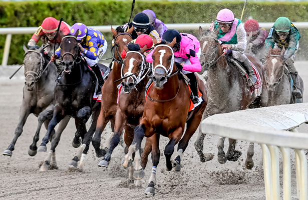 Kentucky Derby 2019 Daily: The X factor checks 'a lot of boxes'