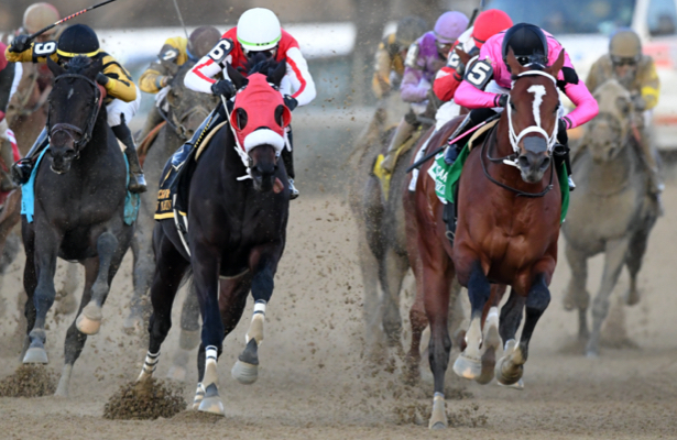 Pegasus World Cup next for 'truly special' Maximum Security