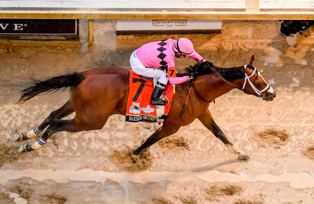 Shifman: Maximum Security among Top 10 in Derby aftermath
