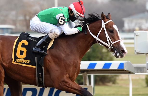 Kentucky Derby trail: Maximus Mischief cruises in Remsen