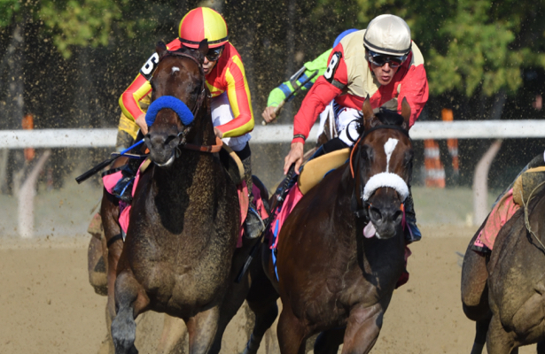 HRN Division Rankings: All but two Eclipse races up for grabs