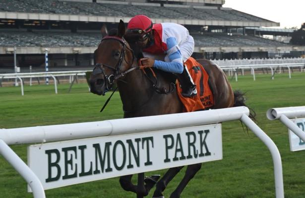 Top turf mare Mean Mary returning in '21 for Motion