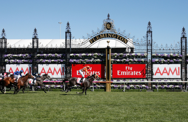 Top NZ jockey's pick for Melbourne Cup