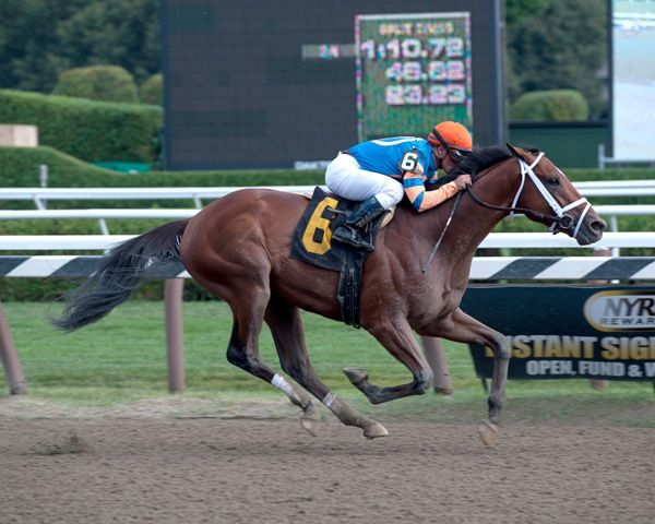 Micromanage debuts a winner at Saratoga on 9-1-12.