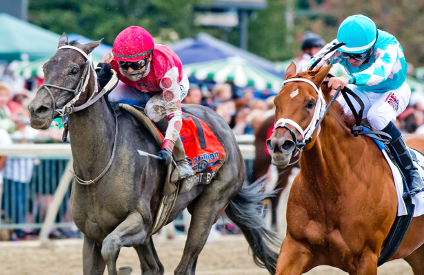 Asmussen likes what he sees from Breeders' Cup-bound Midnight Bisou