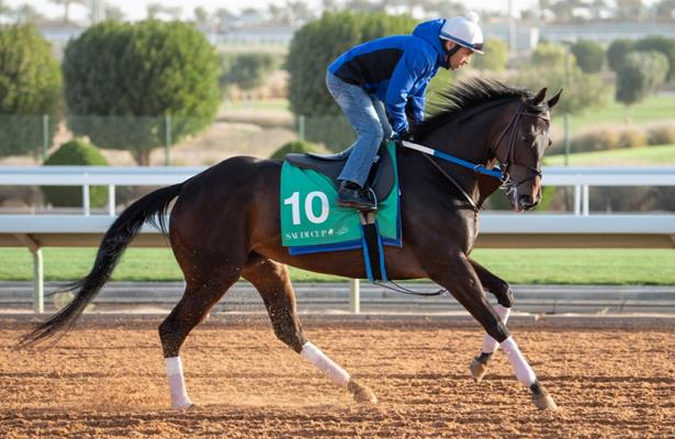 Midnight Bisou's Horse of the Year aims start with Saudi Cup