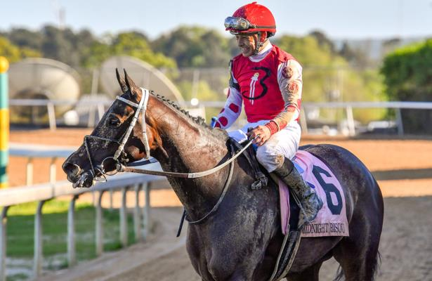 Belmont's Beldame next on Midnight Bisou's Breeders' Cup march