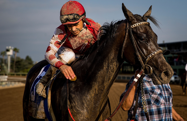 Throwback Runner Midnight Bisou Prepares For 2019 Debut