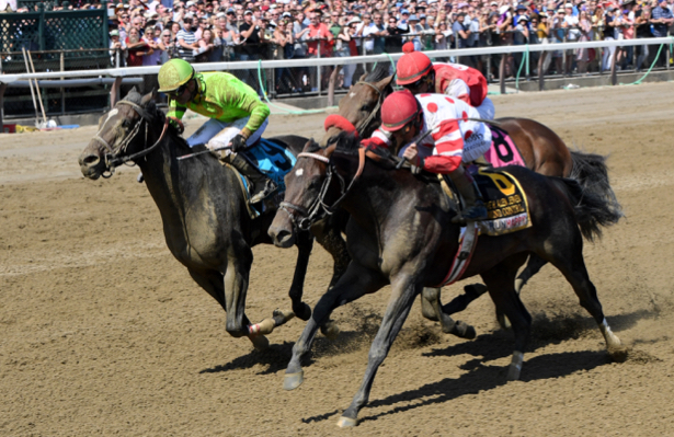 Mind Control gets the bob in Saratoga's Allen Jerkens Stakes