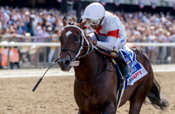 What would you do? 5 pending Breeders' Cup race decisions