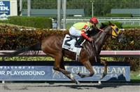Moment of Delight wins 2016 Boca Chica