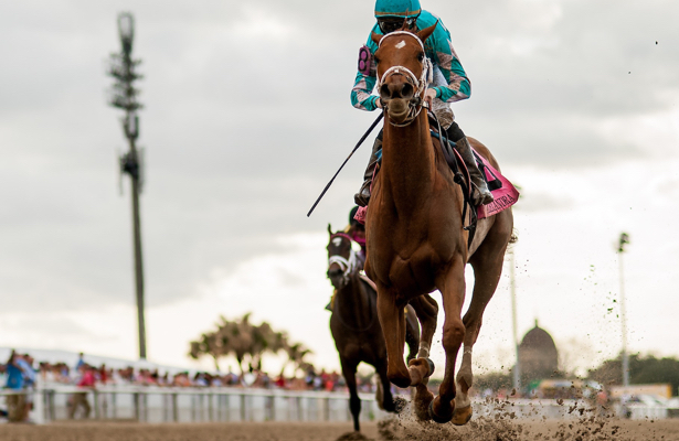 Kentucky Oaks 2018 contenders to know and horses to watch