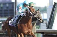 Breeders' Cup Distaff 2020: Odds and analysis