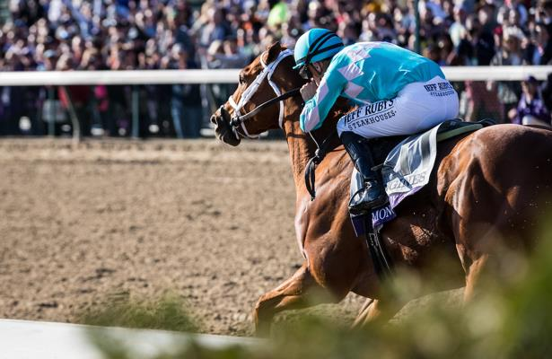 Muscle strain counts Monomoy Girl out of Breeders' Cup