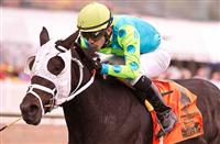 Monster Sleeping wins 2013 MD Million Ladies