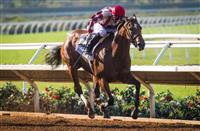 Moonshine Memories wins 2017 Del Mar Debutante