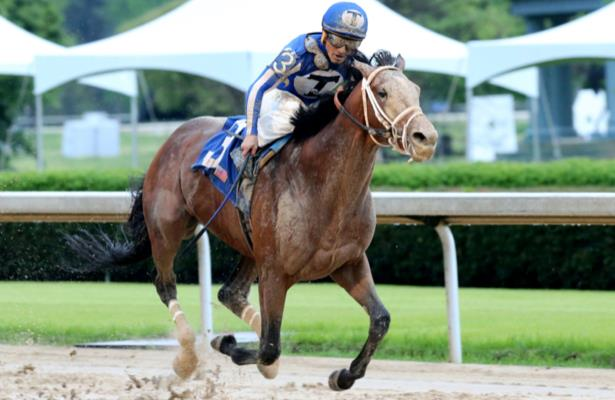 Mr. Big News: Probable for Preakness; decision likely later this week