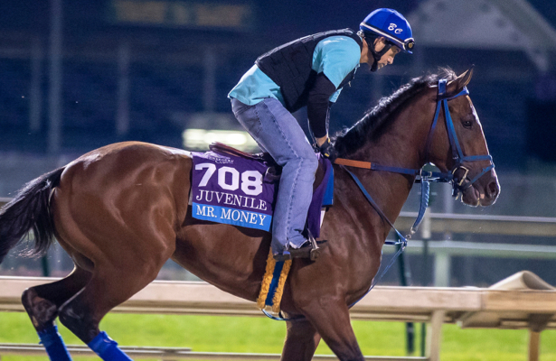 Kentucky Derby 2019 Daily: Full Lecomte Stakes field expected
