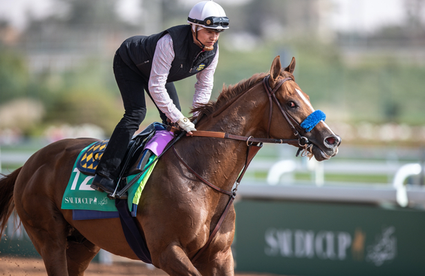 Report: Mucho Gusto, Tacitus move on to the Dubai World Cup