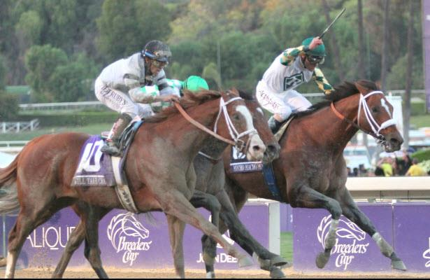 Mucho Macho Man wins the Breeders' Cup Classic