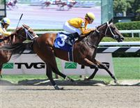 My Miss Aurelia breaks maiden at Saratoga (7-22-11).
