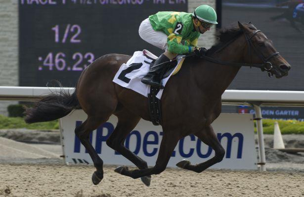My Gal Betty tops contentious field in Woodbine's My Dear Stakes