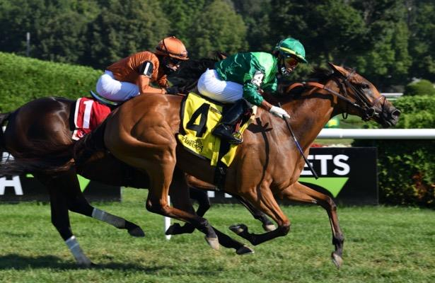 Brant, Brown team up for Waya Stakes win with My Sister Nat