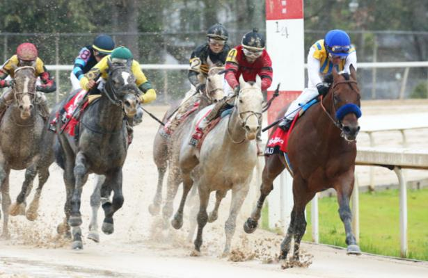 2020 Kentucky Derby Future Wager Pool 4 set; see the odds