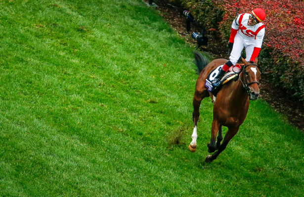 Super Screener: Takeaways from a chalky Breeders' Cup