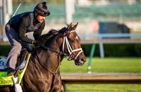 Noble Indy 'into the mix' for Belmont 2018 run, Pletcher says
