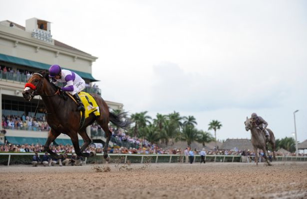 Nyquist cruises home in 2016 Florida Derby